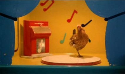 http://doctordocumentary.files.wordpress.com/2010/03/stroszek-dancing-chicken-e1277851693909.jpg